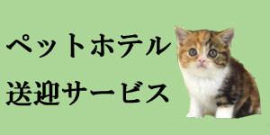 http://koinu1.com/サービス/送迎サービスに関して/